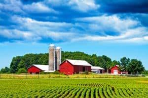 Farm-600x4001